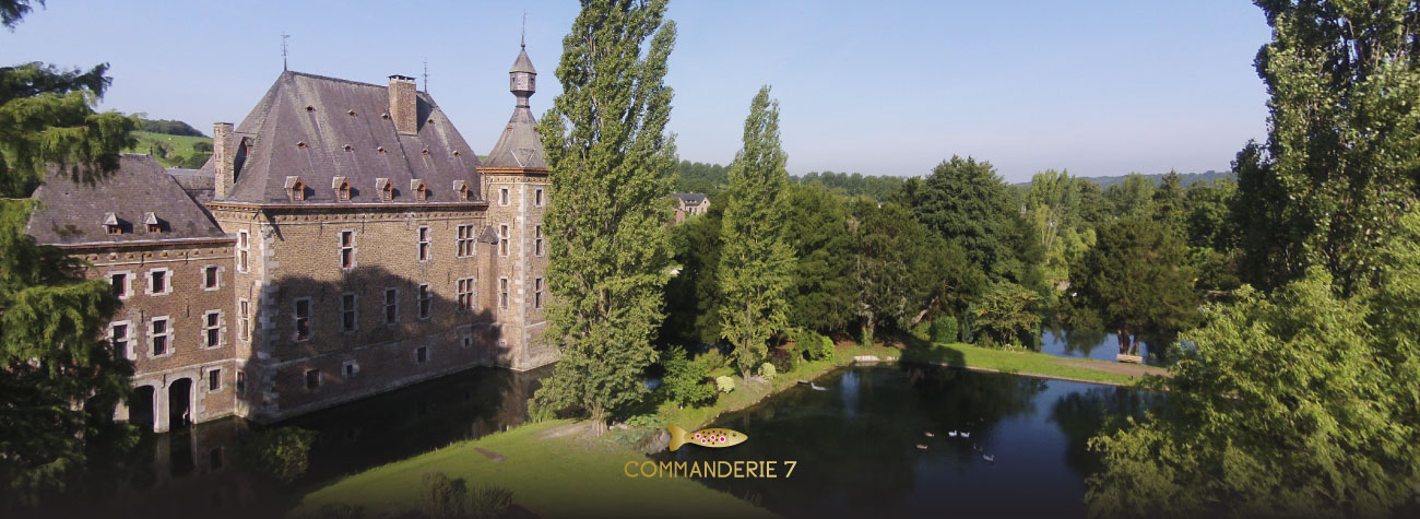 slider-commanderie3drone-chateau1